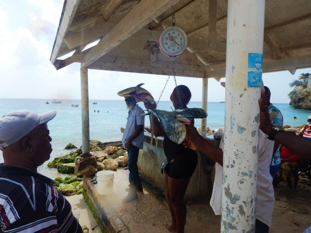 Playa Grandi - Piscado Curaçao