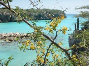 De beste stranden van Curaçao