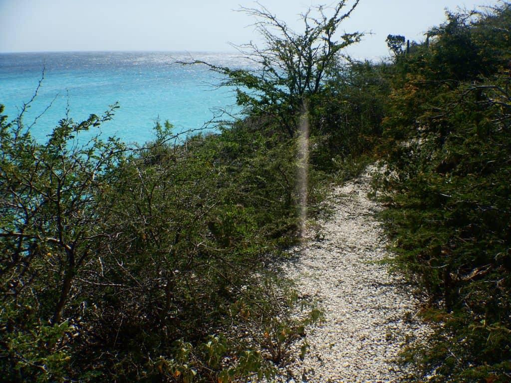 Playa Daaibooi hike Curaçao
