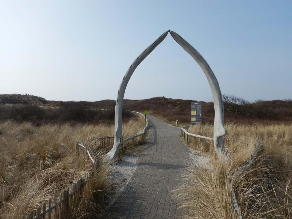 Wandeling op Ecomare Texel