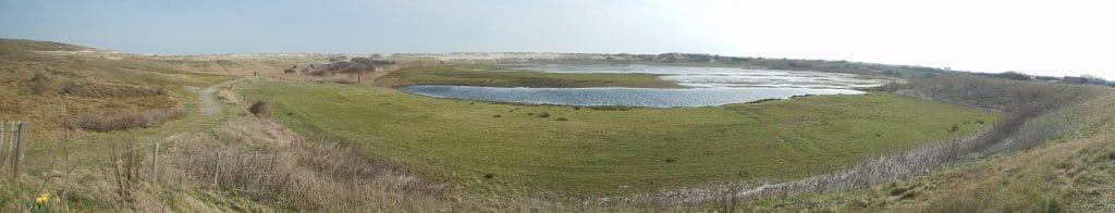 Renvogelveld Texel