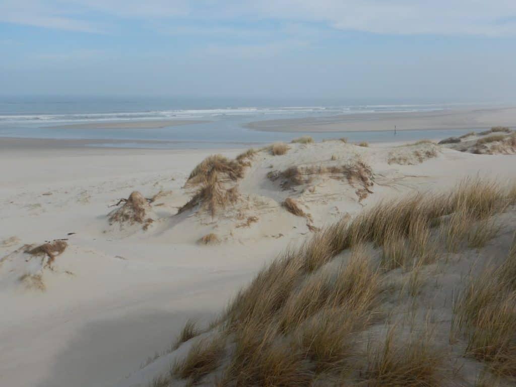 Natuurgebied De Slufter Texel