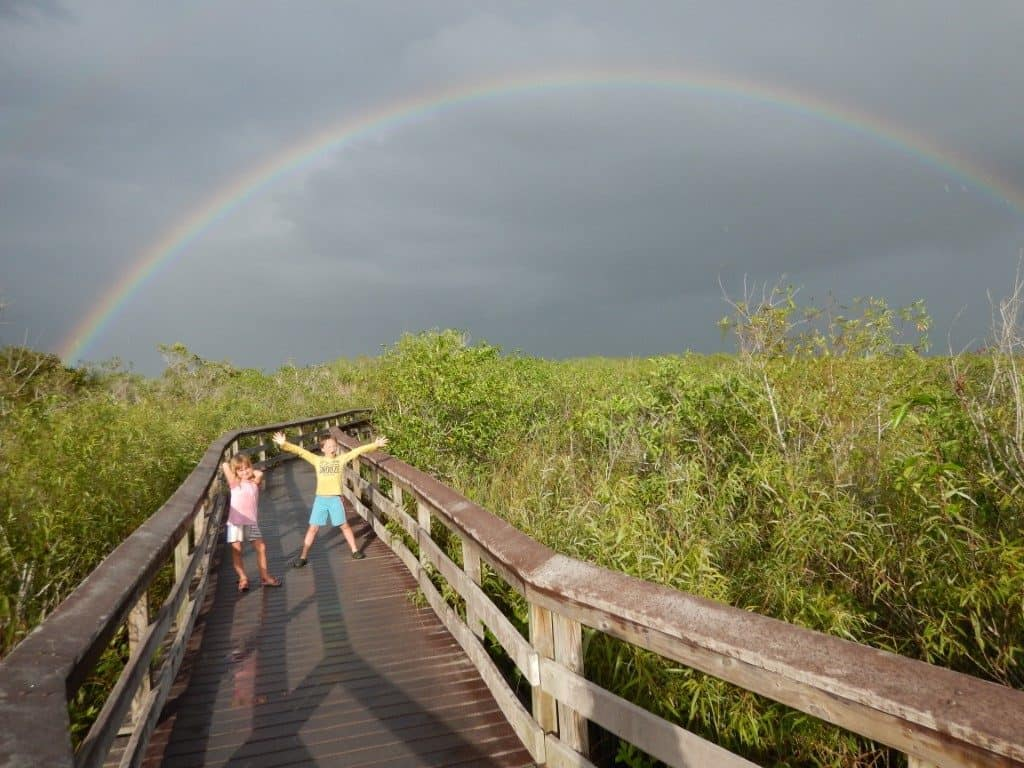 Anhinga Trail - Everglades National Park