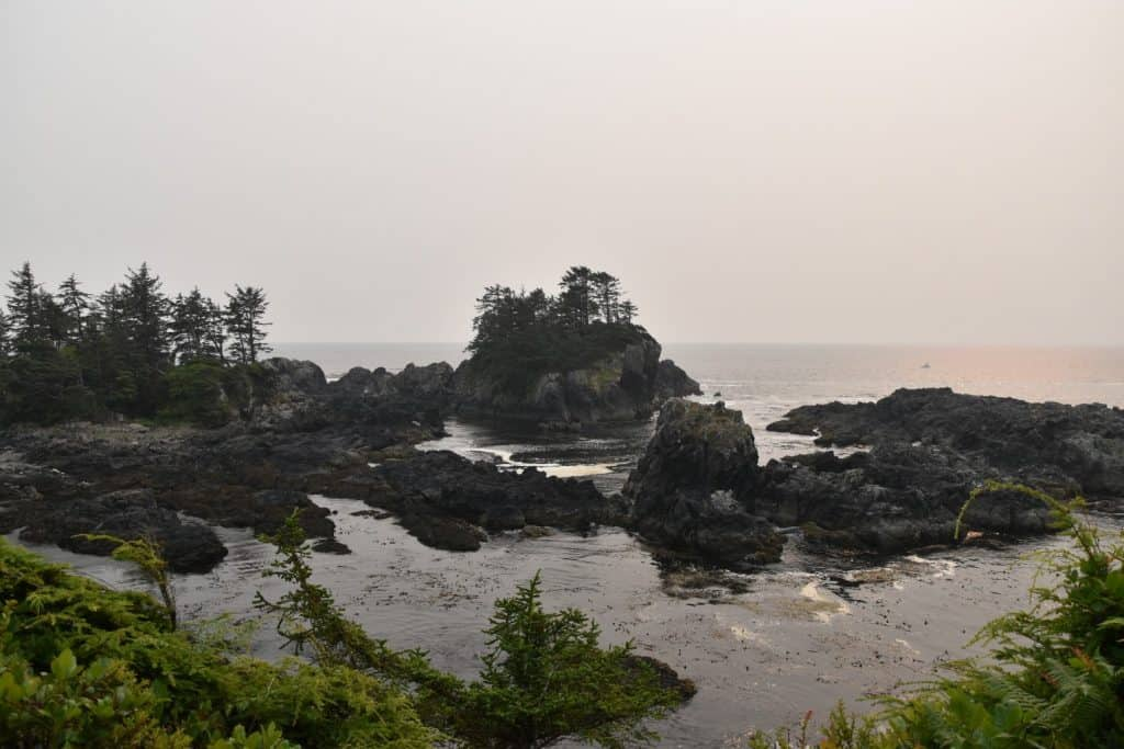 Wild Pacific Trail - Ucluelet BC