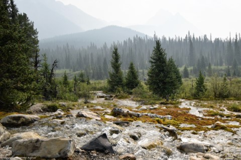 Johnston Canyon - Banff National Park - Ink Pots