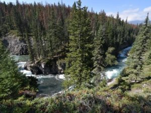 Wandeling Maligne Canyon – Jasper National Park