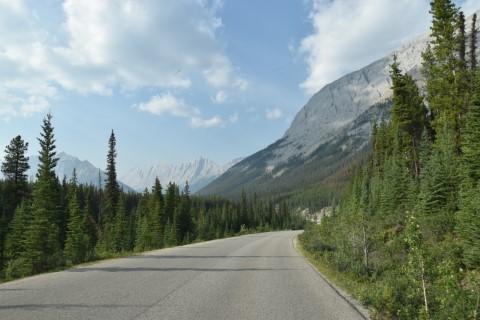 Jasper National Park - Road