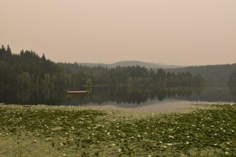 Dutch Lake