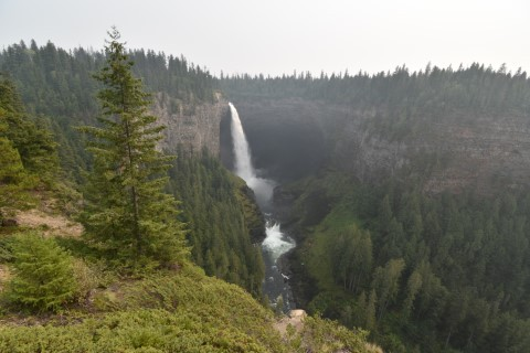 Watervallen, beren en zalm in Wells Gray National Park