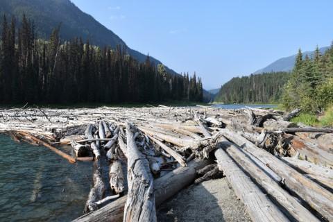 Duffey Lake BC