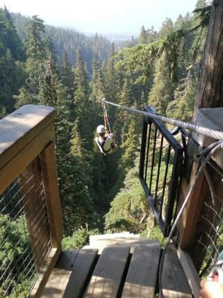 Wandelen en zippen met Ziptrek Ecotours op Whistler Mountain