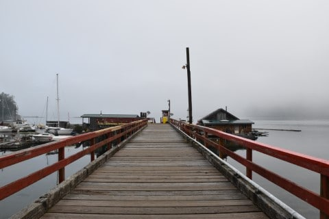 Crab Dock Tofino
