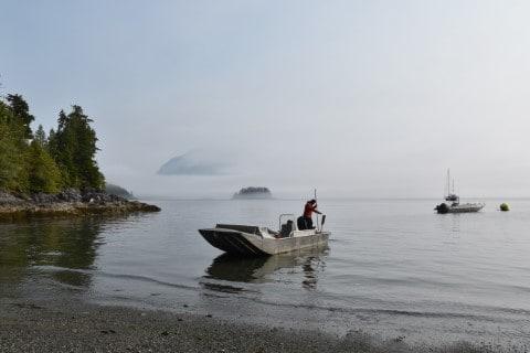 Islandhoppen naar Vargas & Meares Island - Tofino