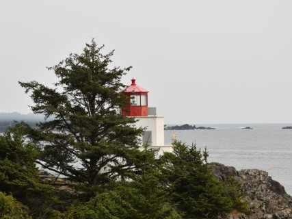 Wild Pacific Trail – Lighthouse Loop Walk – Ucluelet