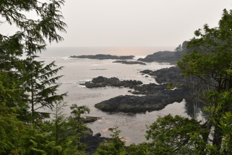 Wild PaciWild Pacific Trail - Lighthouse Loop Walk - Uclueletfic Trail - Lighthouse Loop Walk - Ucluelet
