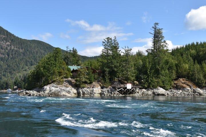 Whale Watching Tour - Tidal Rapids - Stuart Island BC