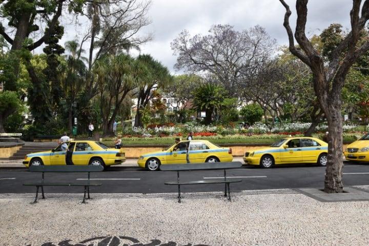 Jardim Municipal do Funchal