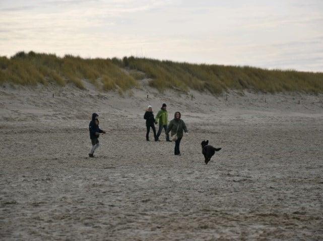 Mag je hond los op het strand van Groede?